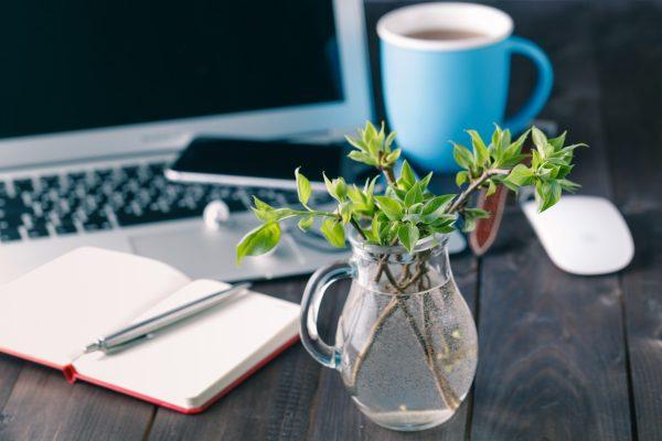 Why take time to write a blog?